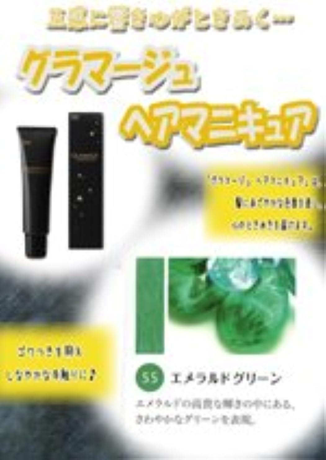 ゴミ作業のHOYU ホーユー グラマージュ ヘアマニキュア 55 エメラルドグリーン 150g 【ビビッド系】