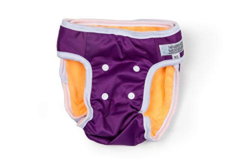 Washable Wonders Dog Diapers for Female   No Tail Hole   Premium Reusable Dog Panties   Absorbent Dog Diaper   Dog Diapers for Small Dogs (Sm Purple)