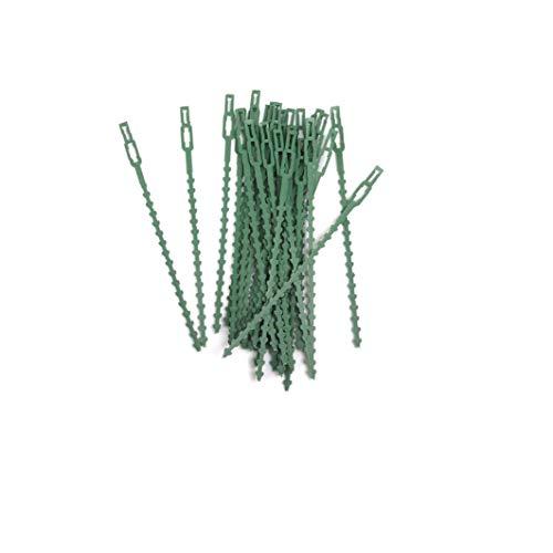 30pcs Jardin des plantes en plastique Ties réglables Cravates plantes flexibles plantes câbles Attaches jardin en plastique Liens pour plante Soutien arbre en toute sécurité vigne (Vert)