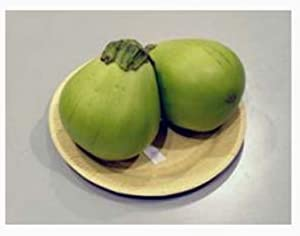 Green Japanese Sales of SALE items from new works Eggplant Seeds Max 76% OFF Daimaru Ao -