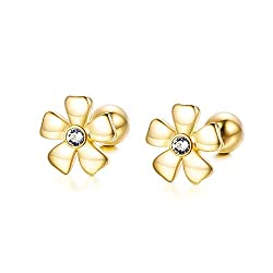 14K Gold Earrings Available on Amazon-Click the Picture to Check Price