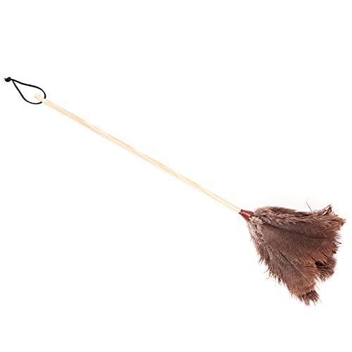Acan Pamex - Plumero de Plumas de Avestruz 64 cm, Mango de Madera con cordón, Plumero atrapapolvo, Plumas Suaves, Reutilizable, Lavable, Quitar el Polvo, Telas de araña, Limpieza del hogar, Oficina