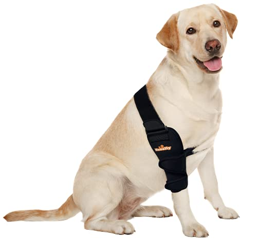 Neoally Breathable Dog Elbow Brace Protector Pads for Canine Elbow and Shoulder Support Elbow Hygroma, Dysplasia, Osteoarthritis, Elbow Calluses, Pressure Sores and Shoulder Dislocation (Right Medium)