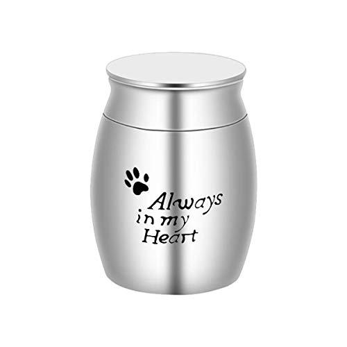 Suntapower Mini Cremación Urnas para Cenizas Acero Inoxidable Pequeño Recuerdo para Cenizas Monumento Titular de Cenizas para Humanos Mascota Perro Gato Cenizas con Kit 40mmx30mm