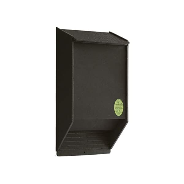 Nestbox Co Eco Bat Box with Crevice Roosting Chamber