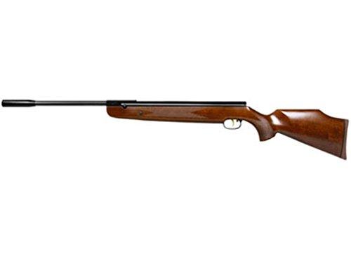 Beeman R9 Sights Air Rifle