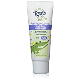 Tom's of Maine Natural Toddler Training Fluoride Free Toothpaste Mild Fruit, 1.75 Ounce (Pack of 3)