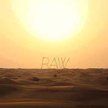 Raw (feat. Armen Paul)