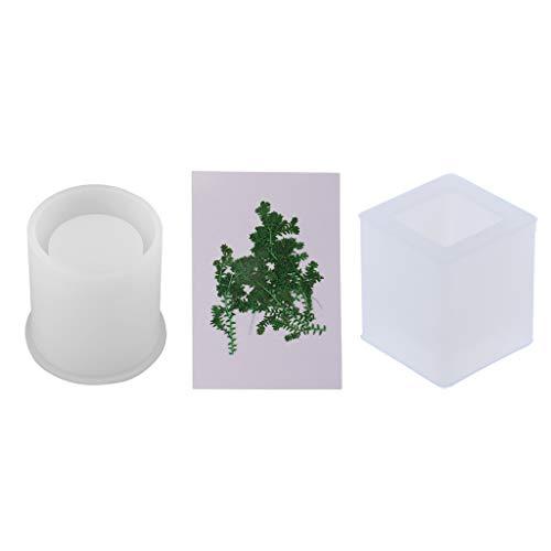 No Brand - Relleno de flores secas y molde de silicona para tarro de cepillo