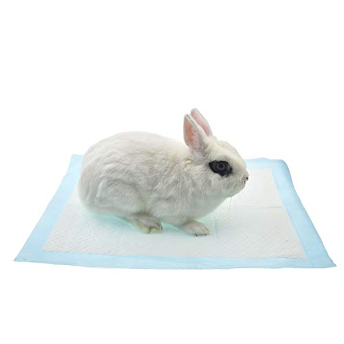 can a wee wee pad be in a rabbit cage