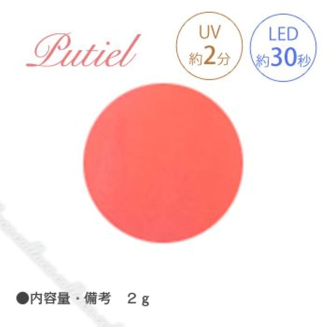 サイドボード酸許可するPutiel プティール カラージェル 143 ホットネオンオレンジ 2g