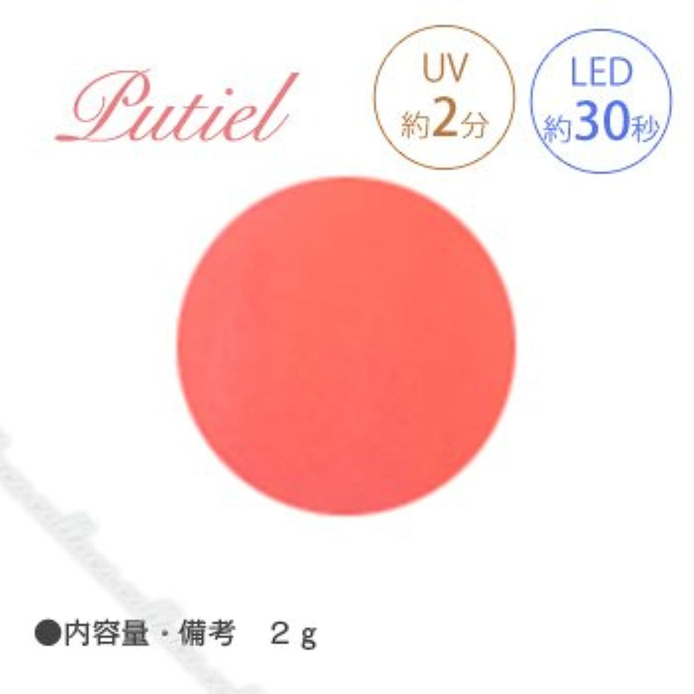 話記念品博覧会Putiel プティール カラージェル 143 ホットネオンオレンジ 2g