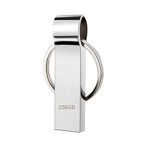RUICHENXI Pendrive Chiavetta 256GB Flash Drive USB Metallo Impermeabile Stick Memory Con Portachiavi Portatile