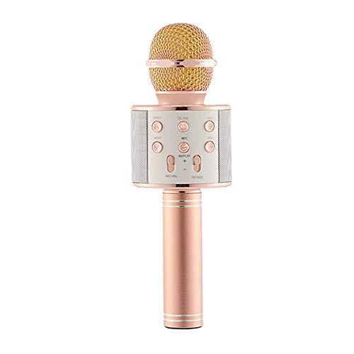 Niños Karaoke Micrófono Micrófono Dispositivo de karaoke Audio Micrófono