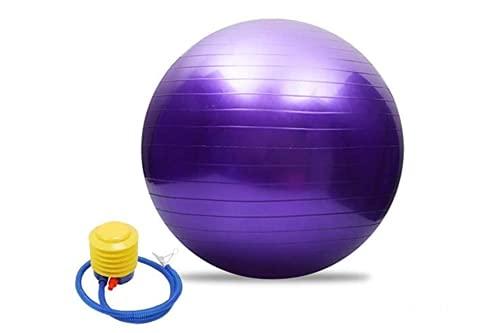 PERPETUAL Pelota Pilates Balón Embarazo Suiza Ejercicio Fitness Grande 65 cm Fitball con Inflador AntiExplosión Yoga Tonificación Ejercicios Gimnasia Casa Mujer Embarazada Trabajar Silla Oficina ⭐