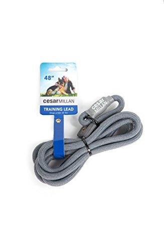 Cesar Millan Trainingsleine für Hunde (Small/Medium) - Länge 120 cm, Durchmesser 1 cm