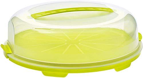 Rotho Fresh Campana per torta piatta con cofano e maniglia per il trasporto, Plastica PP senza BPA, Verde/Transparente, 35.5 x 34.5 x 11.6 cm
