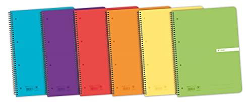 Cuadernos Folio(A4) Enri. Pack de 5 unidades. Tapa plástico. 80 Hojas cuadrícula 4x4. Colores aleatorios