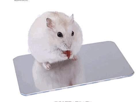 HiColliee ハムスター ひんやりプレートアルミクールマット 涼感 小動物用 ペット夏用品 冷却するペット用ベッド 温度を下げる 熱中症 暑さ対策 爽快 シルバー (120×80mm)