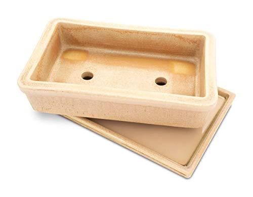 K&K Pot à bonsaï rectangulaire en céramique avec soucoupe Résiste au gel 29 x 18 x 7 cm