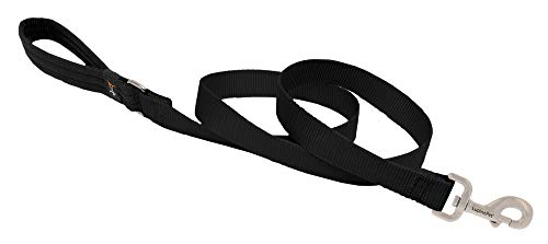 Dog Leash by Lupine in 1' Wide Black 6-Foot Long with Padded Handle