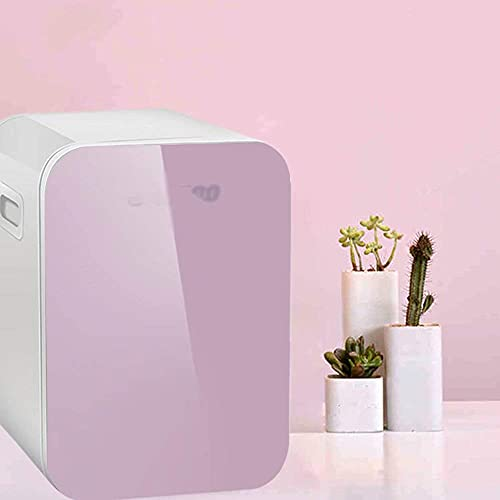 Refrigerador de Carro 10L, minigeladeira Dual-Core Porta dupla Refrigeration Car Dual-Use Hot and Cold Dual Use 220V AC / 12V DC (Cor: Branco)