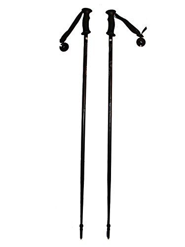 WSD Ski Poles Adult Downhill/Alpine Aluminum 7075 Strong Ski Poles Pair with Baskets Black/Gray New (125cm)