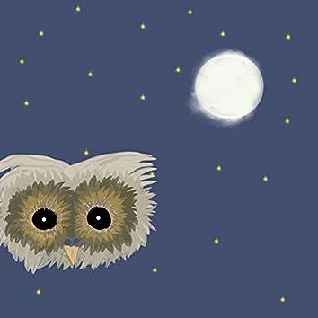 The Owl Says Hoo