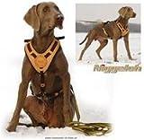 Niggeloh Hundeführgeschirr Mantrailing, braun, L/XL, 111100017