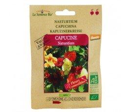 Graines bio Capucine Nasturtium - La Semence Bio