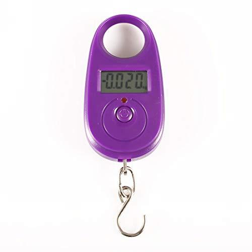 25kg / 5g Mini digitale weegschaal voor Visserij Reis van de Bagage Weging Steelyard Opknoping Electronic Hook Schaal Kitchen Gewicht Tool,B