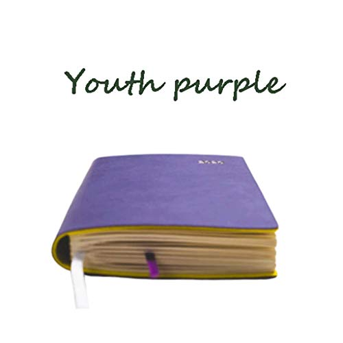 MLOZS Plan mensual, libro de plan semanal A6, se puede llevar alrededor, julio de 2020 a junio de 2021, planificadores bastante simples (color: morado juvenil)