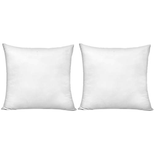 20 x 20 Inch Pillow Inserts (Set of 2), HIPPIH Decorative...