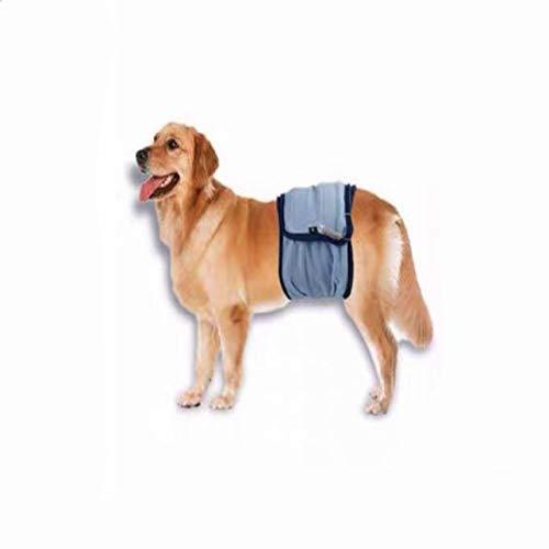 Pañales para perros machos, pantalones de protección lavables para perros machos, ajustables, para incontinencia urinaria, perros masculinos sin formación