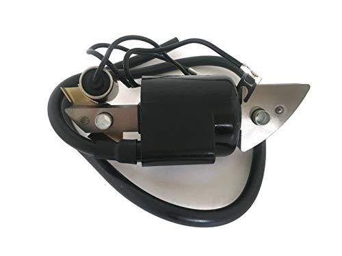 Reemplazar Honda G150 G200 G300 5HP E1500 ED1000 FR 500 HS50 30560-883-015 Encendido Magneto Bobina Assy Lawn Mower Trimmer Motor