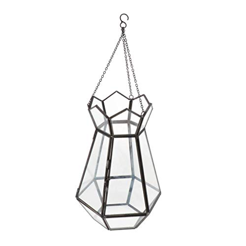 Backbayia Geometrische Glas Terrarium Hängende Blumentopf Blumenampel Hochzeit Dekoration