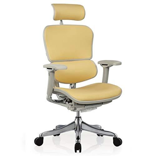 HMBB Sillas de Escritorio, Las sillas reclinables de oficina Oficina Silla con soporte lumbar respaldo alto Silla ejecutiva grueso del amortiguador de asiento ergonómico del asiento de altura ajustabl