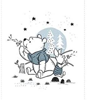 Wonder and Whimsy - Pooh and Piglet Panel