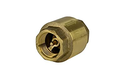 """3/4"""" Brass Check Valve, Inline Spring, Air Water or Oil NPT - TEMCo 5 Year Warranty from TEMCo"""