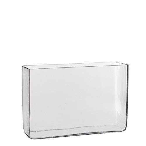 Hoge vaas/accubak transparant glas rechthoekig 30 x 10 x 20 cm Transparant