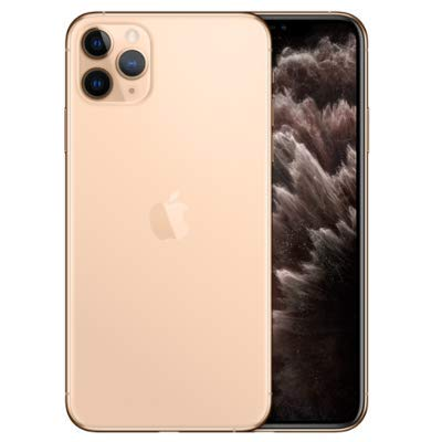 "Apple iPhone 11 Pro Max 6.5"" Unlocked for All CDMA and GSM, Bundle with Free case (256GB)"