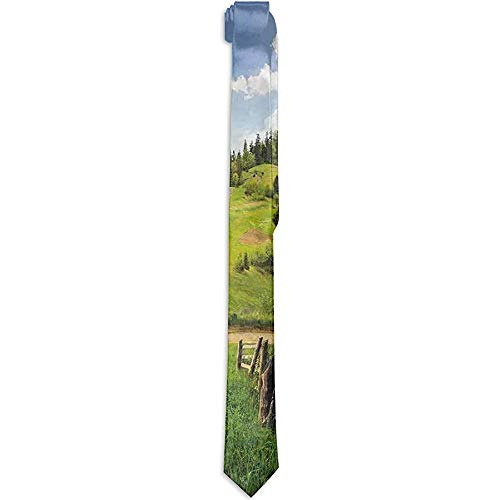 Corbata floral estampada para hombres, prados de ladera Cerca del cielo nublado cerca de la carretera con abetos en ambos lados, corbatas para hombres
