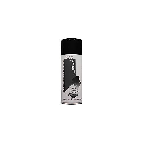 Bombe de Peinture aérosol Noir Brillant