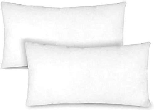 TIENDA EURASIA - Pack de 2 Rellenos de Cojín, Relleno de fibra hueca Neotherm® con gran capacidad de recuperación, Resistente al uso y a lavados (30 x 50 cm)