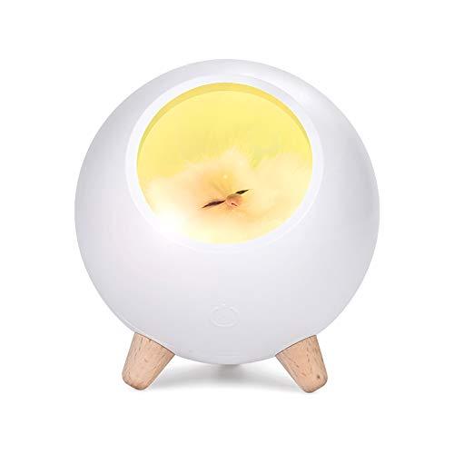 Veilleuse pour enfants et adultes | Décor pour chambre d'enfant | Lampe à DEL pour garçon ou fille | Tranquillité et sécurité pendant la nuit | Rechargeable par USB (Blanc)
