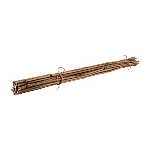 Nature by Kolibri Bambusstäbe, Pflanzenstäbe zur Stabilisierung von Pflanzen im Garten, Rankstäbe Bambus 120 cm naturfarbend, 25 Stück