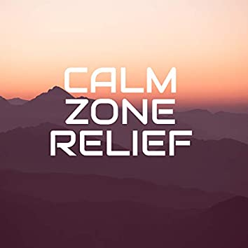 Calm Zone Relief - Soothing New Age Music to Ease Various Types of Pain, Anxiety and Stress