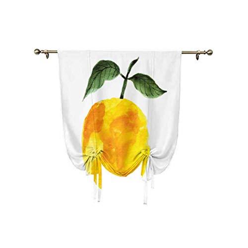 Cortinas amarillas y naranjas, dibujadas a mano, acuarelas de limón, productos orgánicos, naturales, con aislamiento térmico, 24 x 47 pulgadas, para ventanas del hogar, amarillo, naranja, verde
