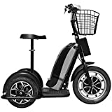 Mototec Electric Trike 48v 800w Sit/Stand 25mph - from in The Hole