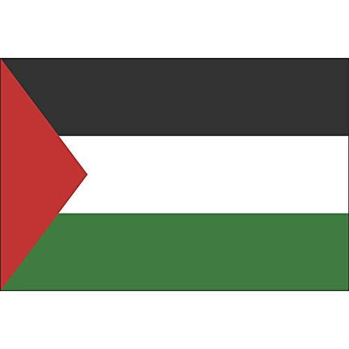 Palestina Gedrukte Banner Vlag Van Palestina, Opknoping Vlag Banner, Zowel Binnen Als Buiten Het Kleden Van 90 * 150cm / 60 * 90cm / 30 * 45cm / 15 * 21 Cm. (Color : 90x150cm)